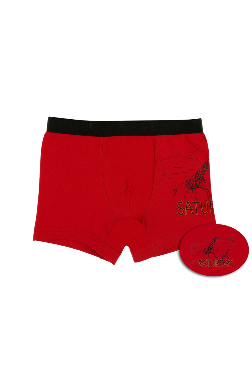 Детские трусики боксеры для мальчика Donella (7 шт) арт. 7571S7