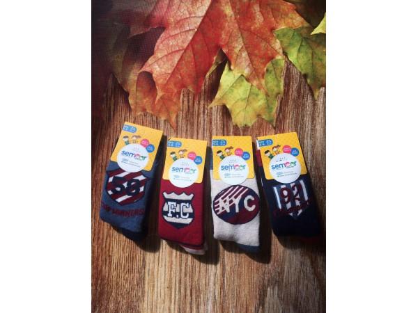 Детские носки махровые для мальчика Baykar арт. 7040-12